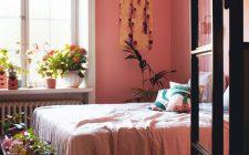 ett-rosa-dromhem